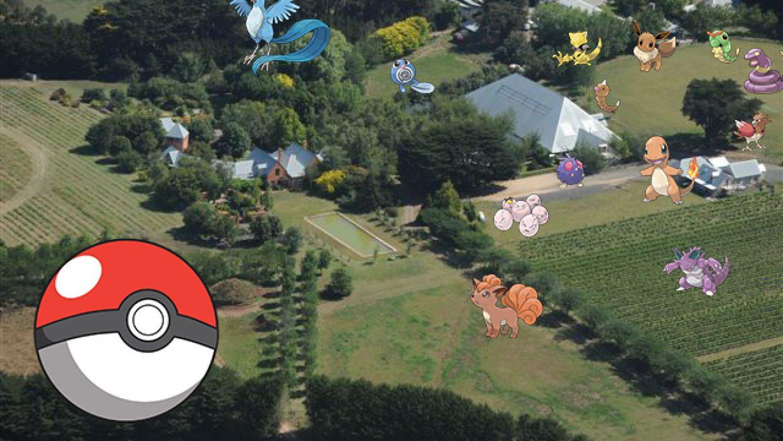 Romsey Wild Pokemon Hunt